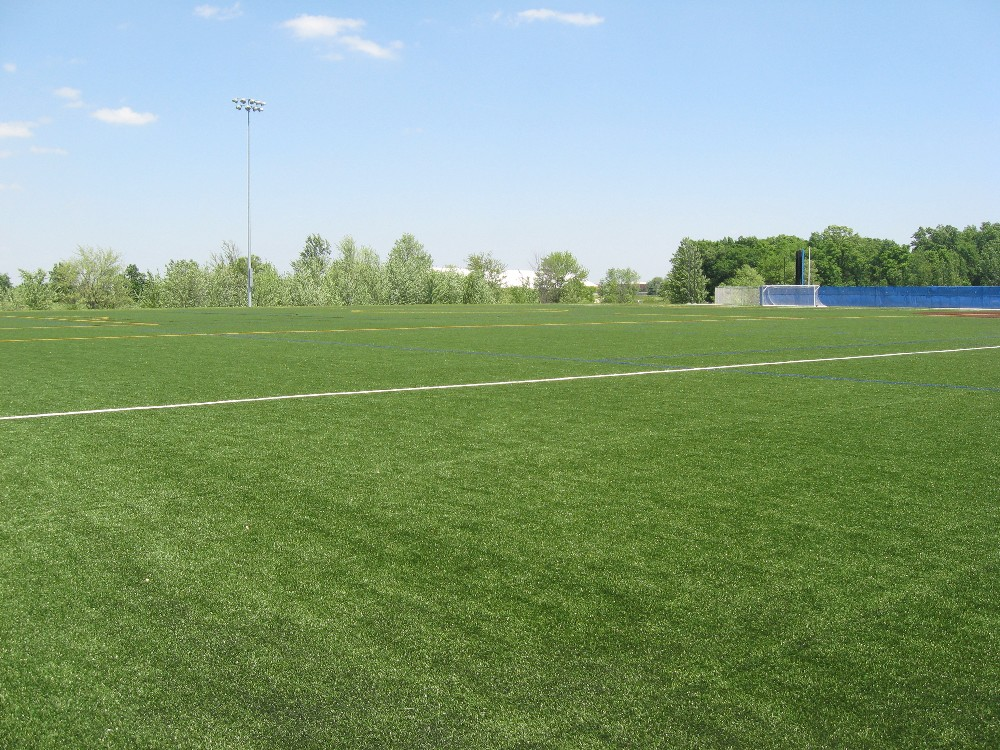 Outdoor Turf Fields whole view